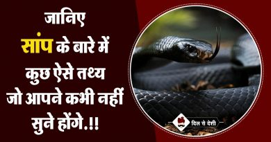 Interesting Facts about Snakes in Hindi