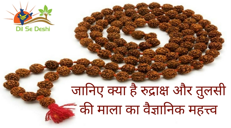 the-scientific-significance-of-rudraksha-beads-and-basil-dilsedeshi