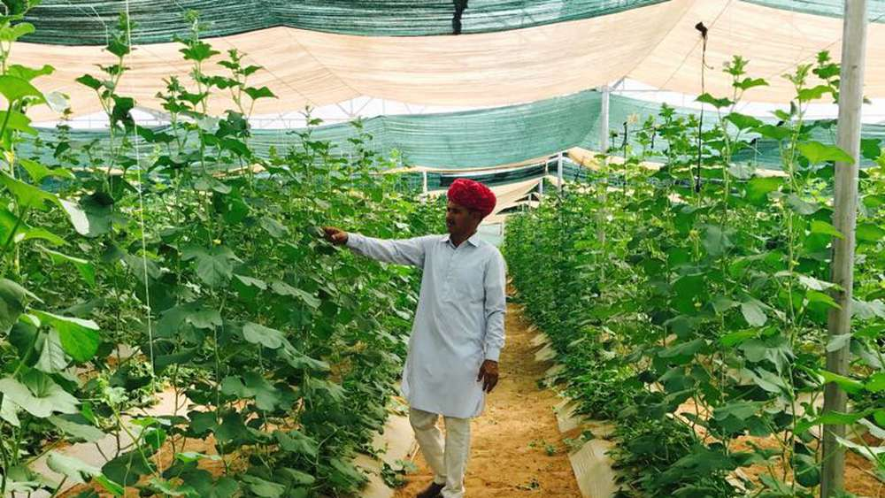 the farmer of rajasthan khemaram made his village a mini israeli turnover of 10 million annually