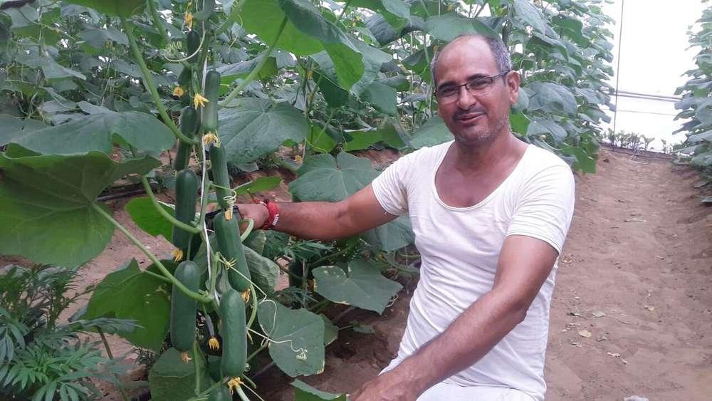 the farmer of rajasthan khemaram made his village a mini israeli turnover of 10 million annually