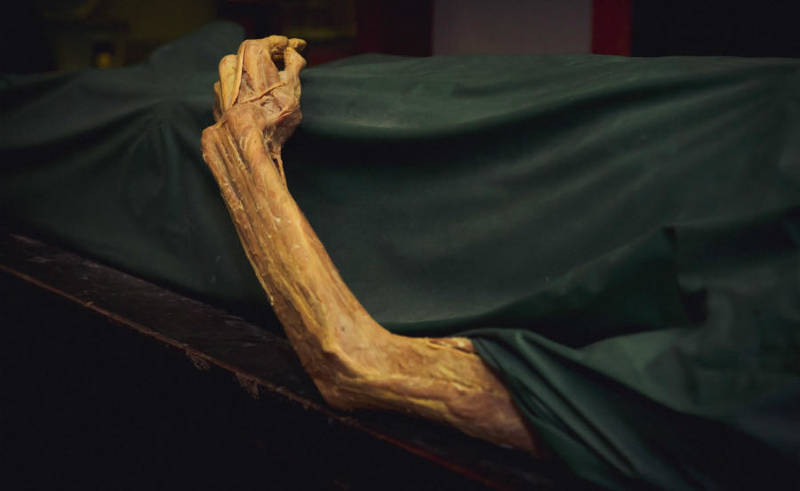 this is what happens with your body after you die