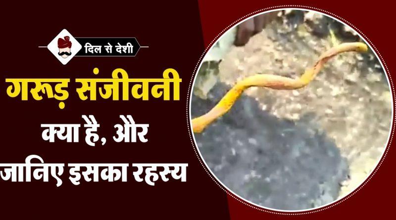 Garuda Sanjeevani and Secrets in Hindi