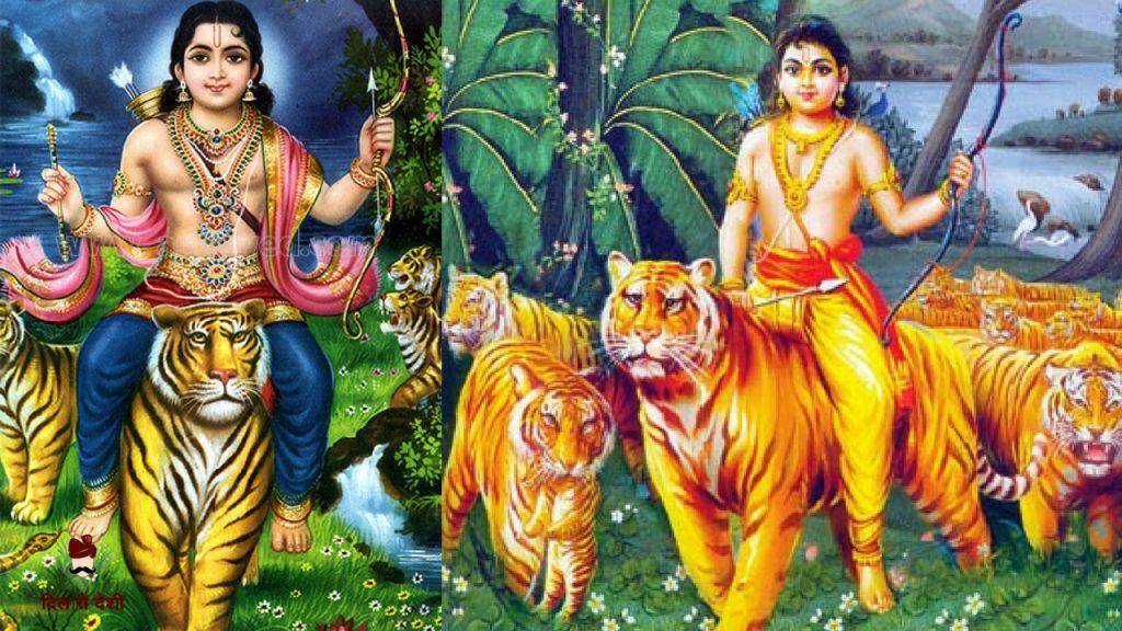 Importance of Lion in Hindu Mythology