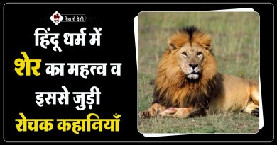 Importance of Lion in Hindu Mythology