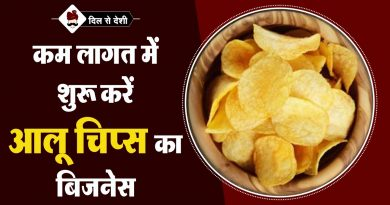 Business of Aloo Chips in Hindi