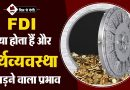 Foreign Direct Investment in Hindi