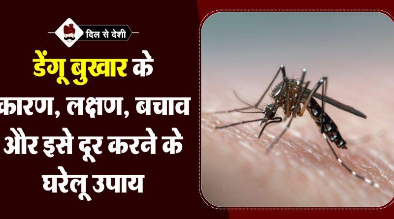 Dengue Fever & Home Treatment in Hindi