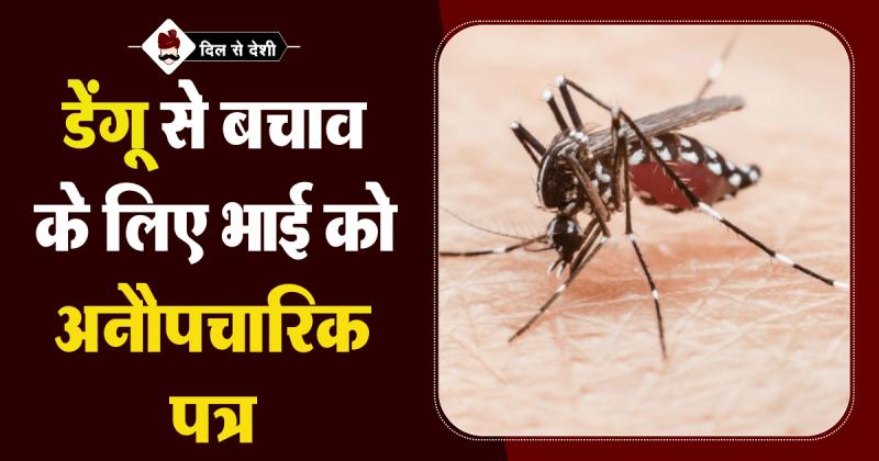 Letter on dengue warning in Hindi