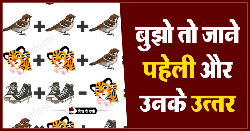 Bird, Lion and Shoe Picture Puzzle No. 12 Answer
