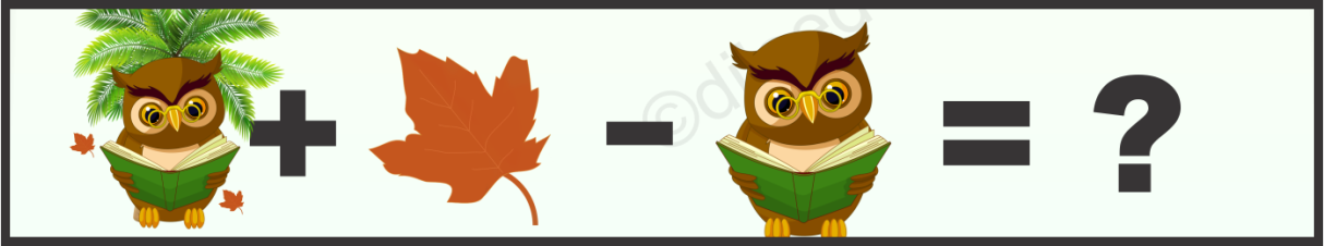 Owl, Leaf and Tree Puzzle Quiz Questions Answer