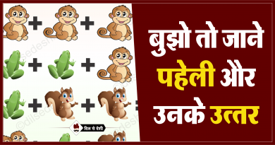Monkey, Frog and Squirrel Logical Puzzle Quiz Questions Answer