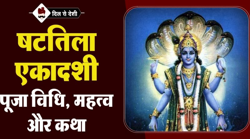 Shattila Ekadashi Puja Vidhi, Mahatva and Story in Hindi
