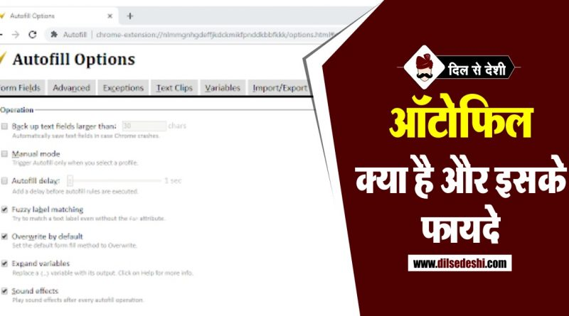 AutoFill Details, Benefits and Disadvantages in Hindi