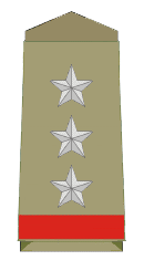 Assistant Police Inspector Rank Insignia