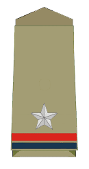 Assistant Sub-Inspector Rank Insignia