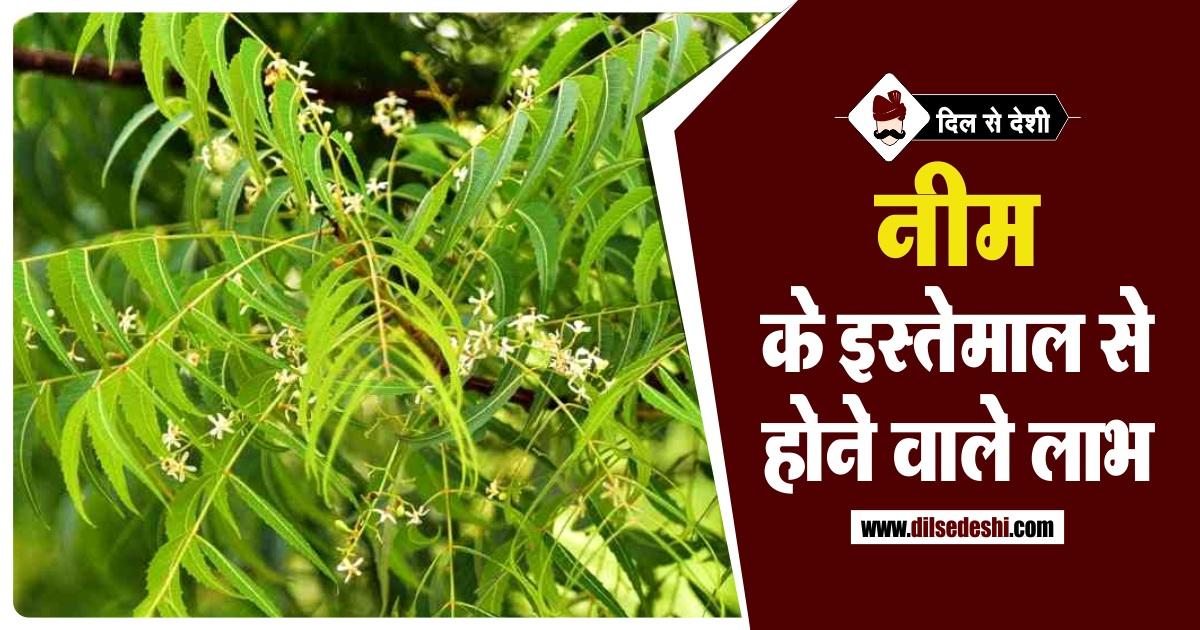 Neem Benefits Hindi नीम के फायदे