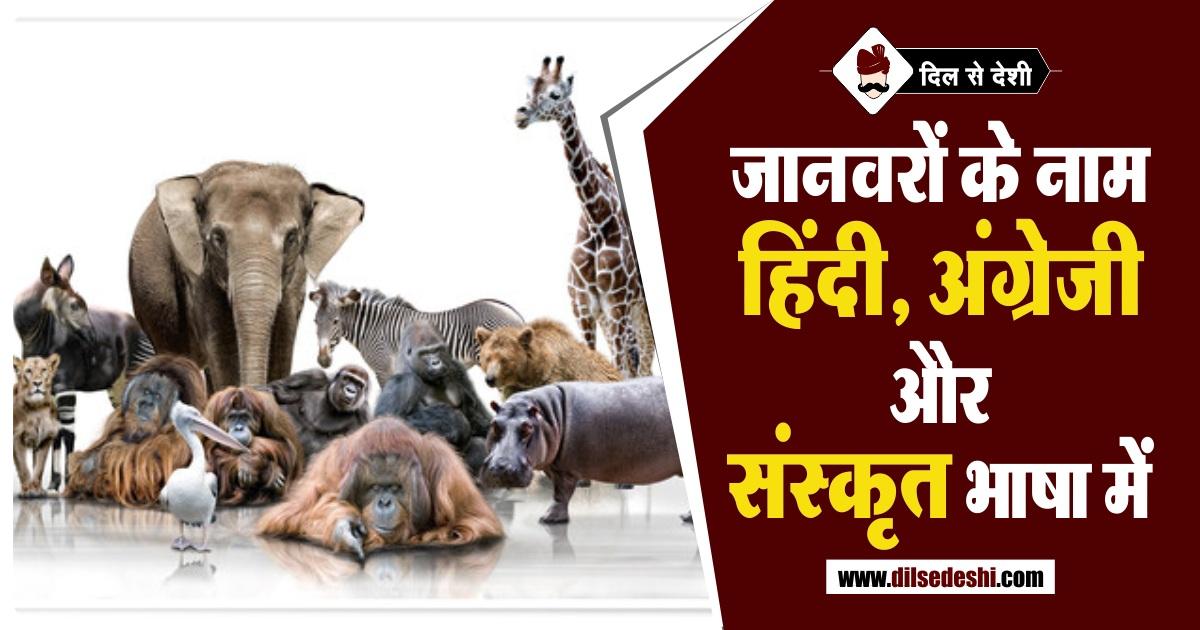 Animal Name in English and Sanskrit