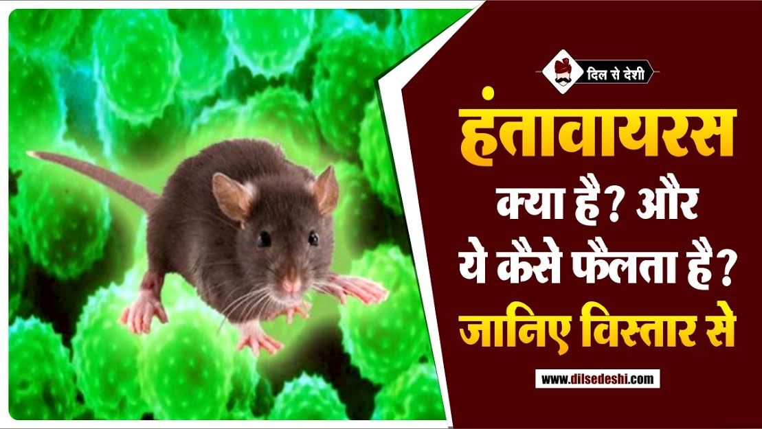 What is Hantavirus In Hindi