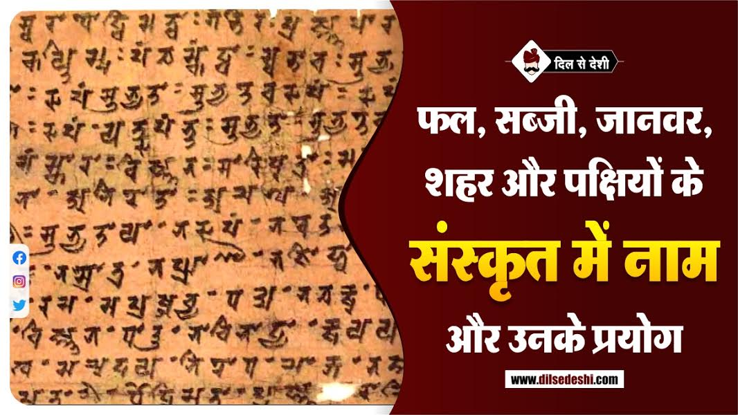 Fruits, Vegetables, Animals, City and Birds Name in Sanskrit